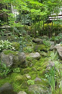 静かな竹林からしみ出す雫が 流れをつくりだす和風の苔庭